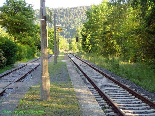 Vom selben Standort aus der Blick Richtung Süden und Elbbrücke.