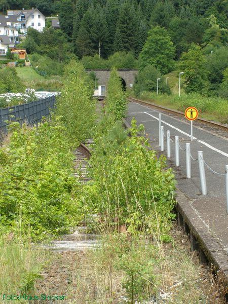 Das ehemalige Kreuzungsgleis mit den Resten einer Weiche.