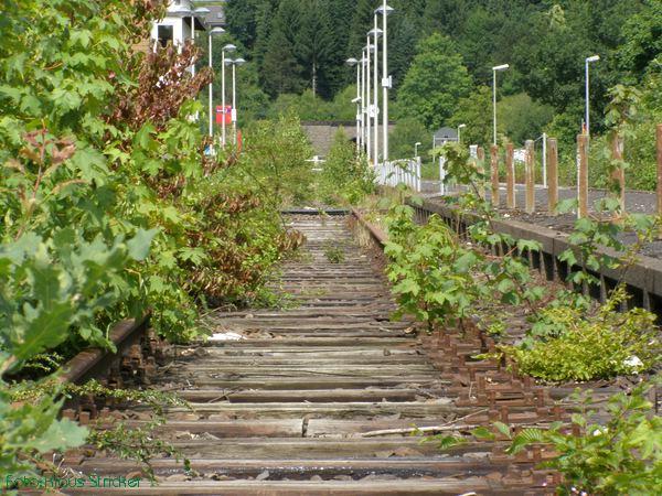 Gleisreste im Bahnhof